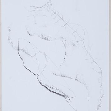 35 x 27 cm  grafite sobre papel