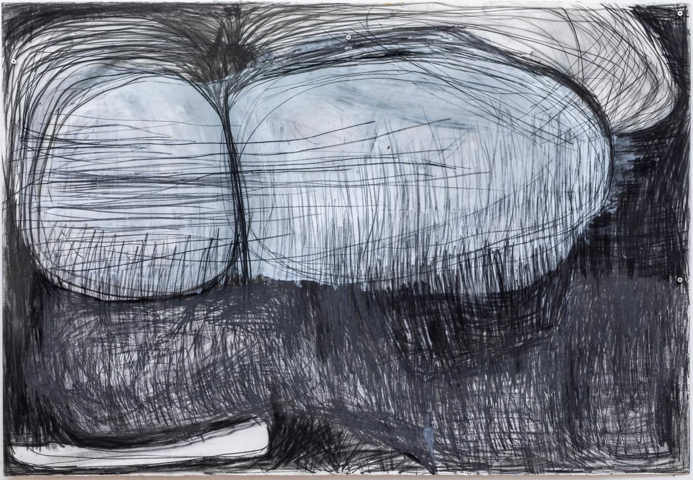 104 x 152 cm giz pastel seco, lápis conté, grafite sobre papel foto: Ruy Teixeira