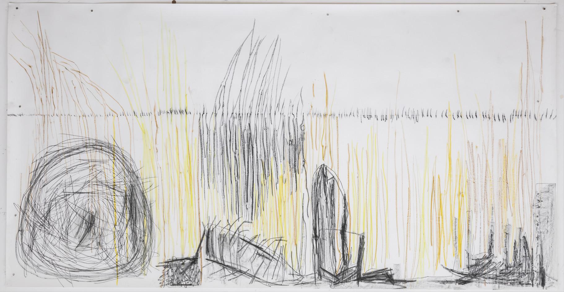 154 x 294 cm giz pastel seco, lápis conté sobre papel foto: Ruy Teixeira