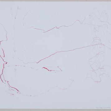 35 x 27 cm  lápis dermatográfico sobre papel