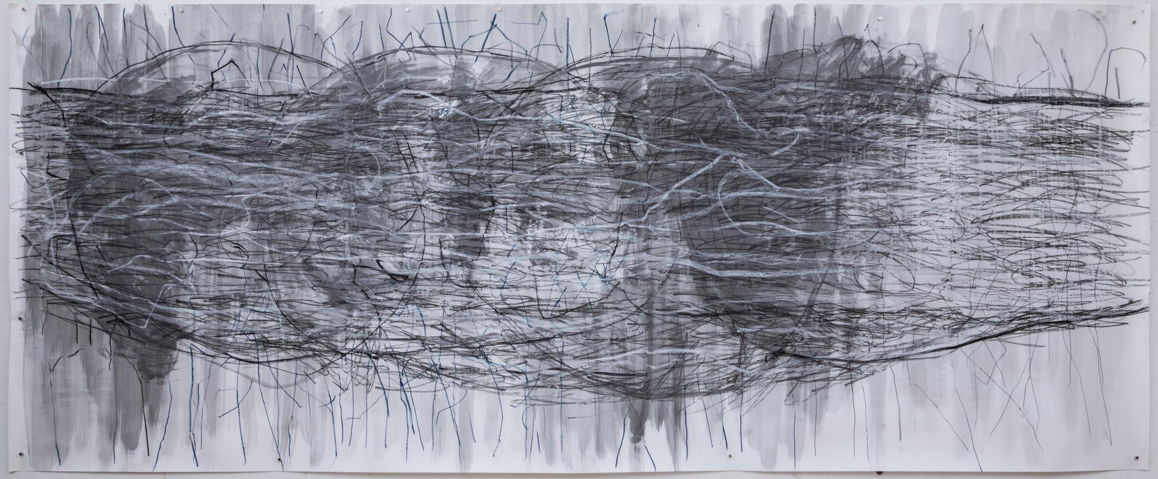 154 x 273 cm grafite e giz pastel oleoso sobre papel foto: Ruy Teixeira