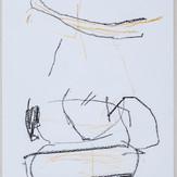 35 x 27 cm  giz pastel e lápis conté sobre papel