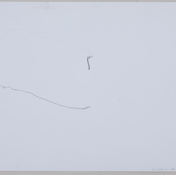 27 x 35 cm  grafite sobre papel