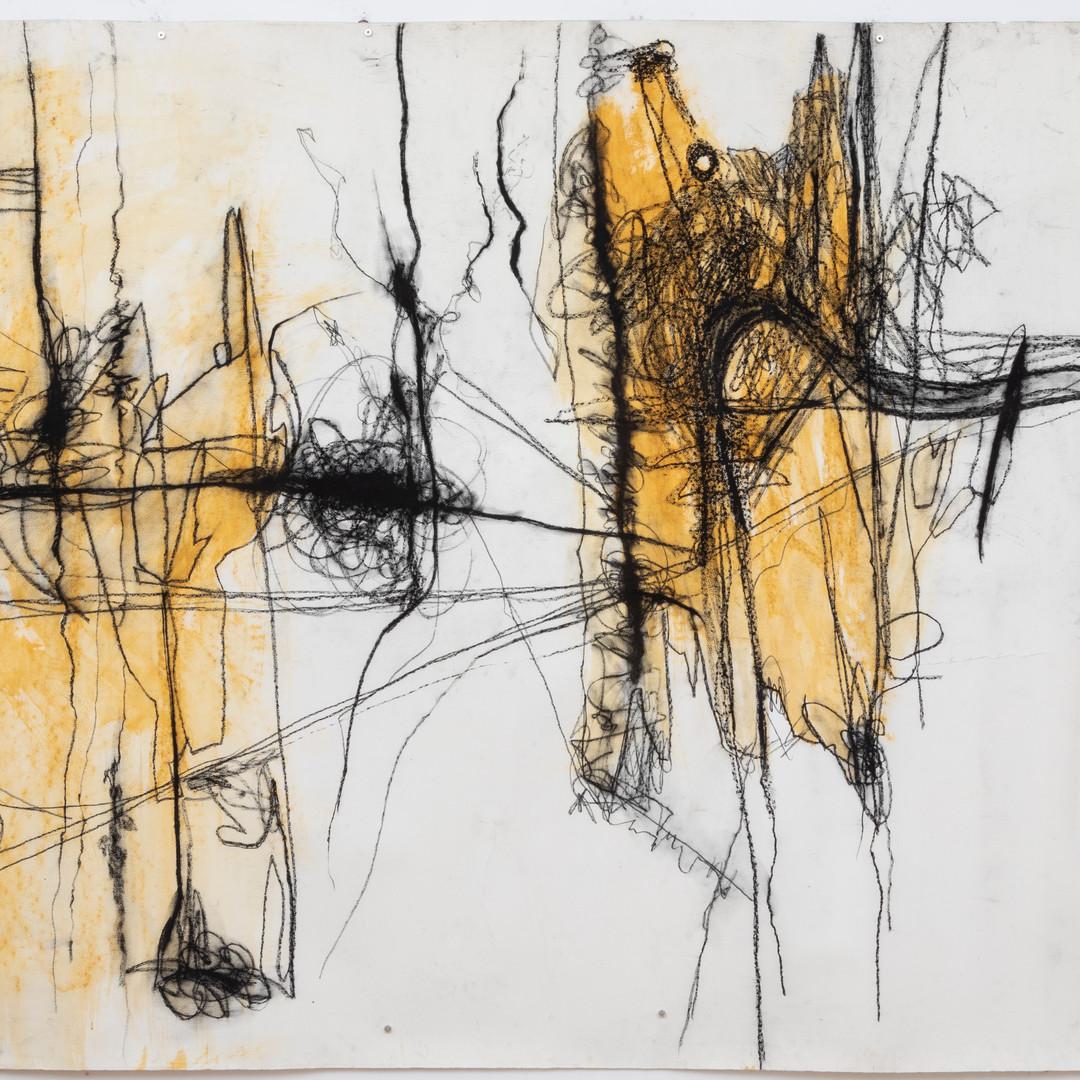 154 x 215 cm  giz pastel seco e lápis conté sobre papel