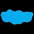 skype-256.png