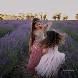 lavender3_edited-1.jpg