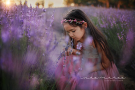 lavender9_edited-1.jpg
