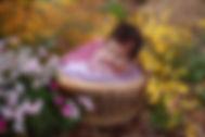 ivy2_edited-1blossom.jpg