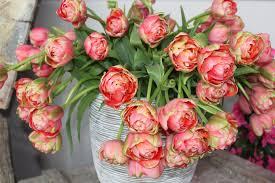 Renown vase