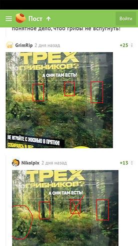 internet-3.jpg