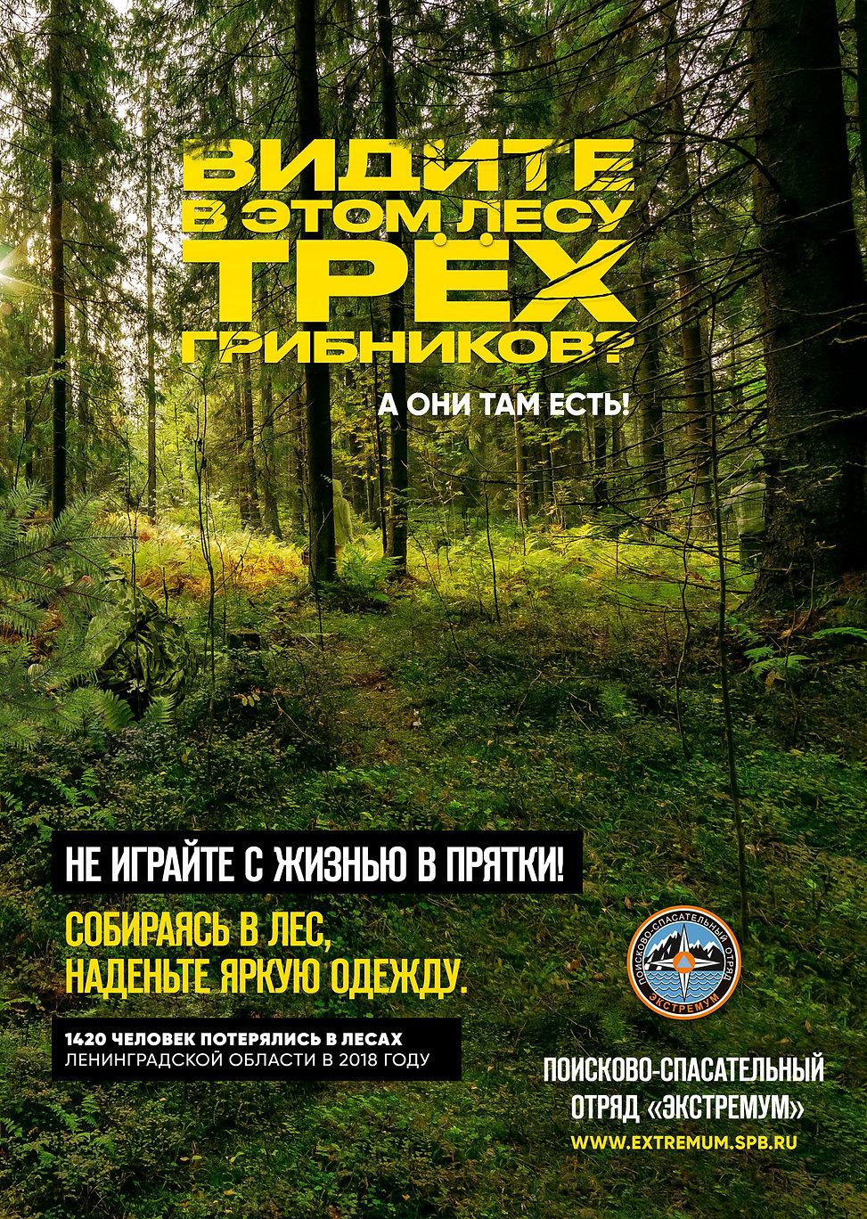 Kollegi CA. Экстремум Extremum грибники реклама Плакат