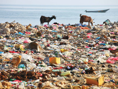 5 Easy Ways to Reduce Plastic Pollution