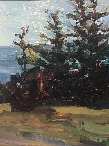 Firs by the Bay by Carole Keller