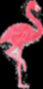 sccpre.cat-flamingo-vector-png-1964040.p