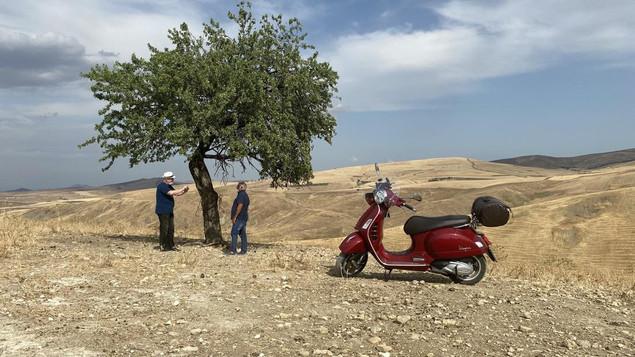 Un pastore in Sicilia