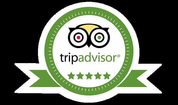 Tripadvisor 5 star.png