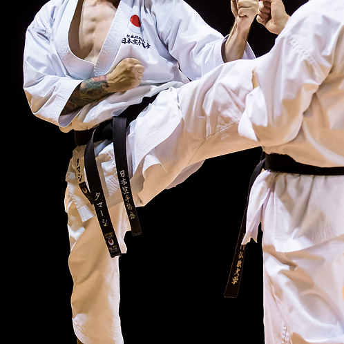 Shobu Kumite (SB-12 TC) - complete karategi