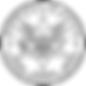us-marshals-service-squarelogo-142848559
