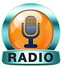 radio_icon-removebg-preview (1).png