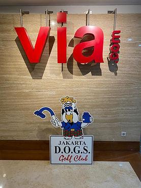 Old DOG at Viacom1.JPG