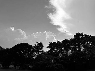 Rancamaya 2021 R5 sky.jpg
