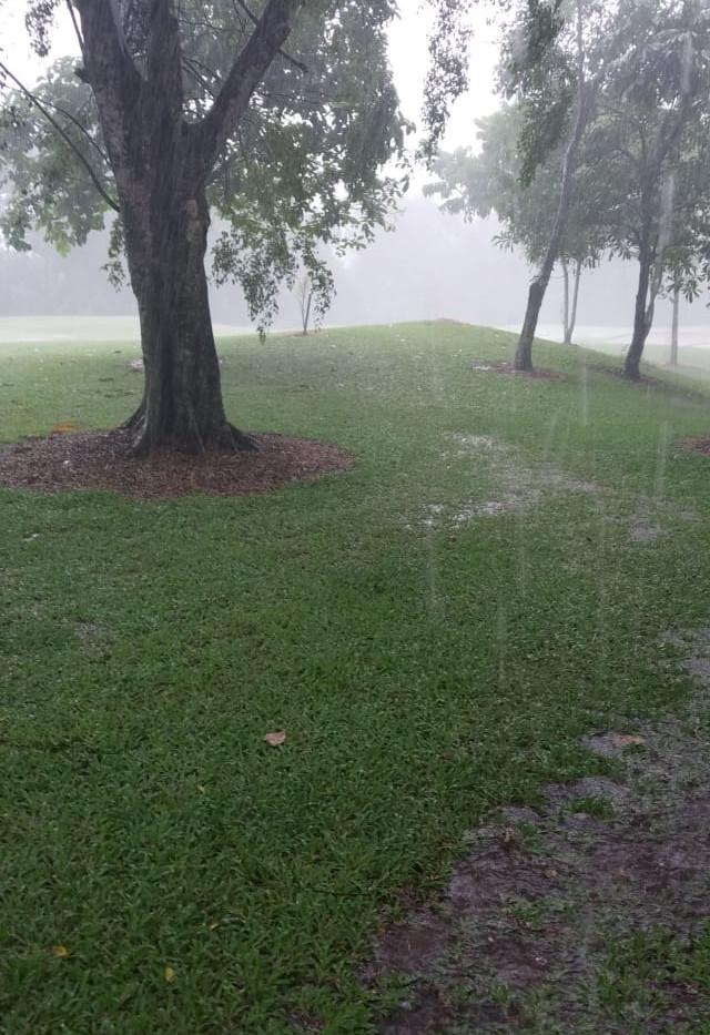 Riverside 2020 Week 1 bit of rain.jpg