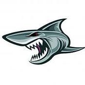 JAWs Logo.jpg
