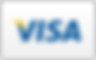 Griffin divorce attorney Kevin Parker accepts Visa, other major credit cards, checks, and cash. This is an image of the Visa payment logo. Payment plans also available.