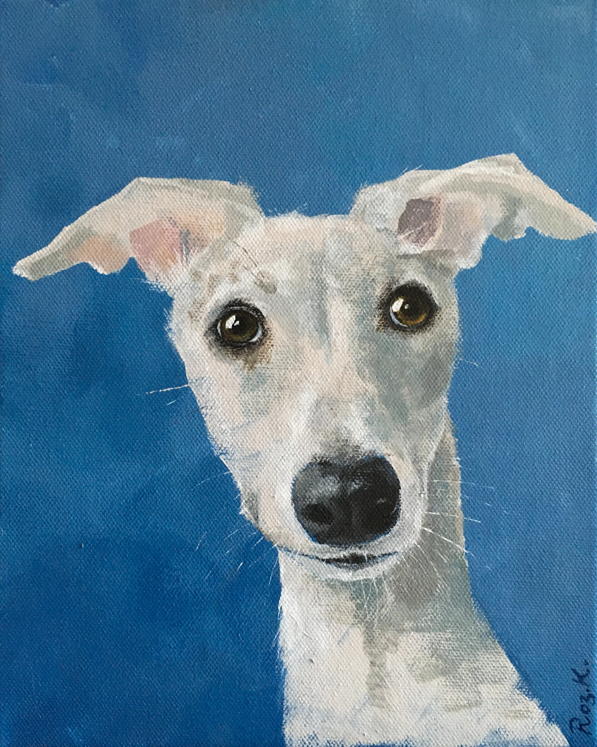 Twiggy Whippet