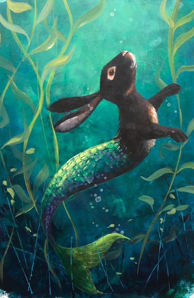 Black Rabbit Submerged