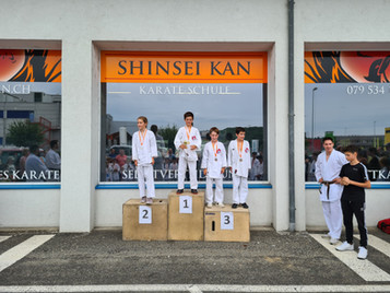 1. Shinsei Kan Dojo-Meisterschaft