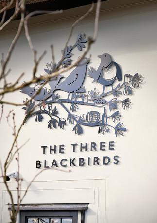 Three Blackbirds Day One March 2020 Emma