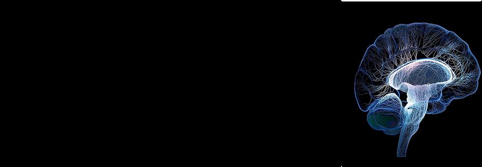 图层 29@2x.png