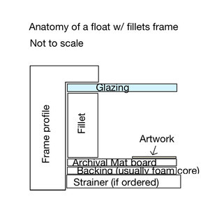 Fillets anatomy