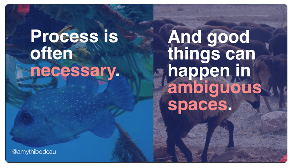"""On the left is a still image of plastic detritus hanging over a fish in the pacific garbage patch. The text """"Process is often necessary"""" is overlaid on it. On the right are goats eating grass on communal land. The text over that says """"And good things can happen in ambiguous spaces."""""""
