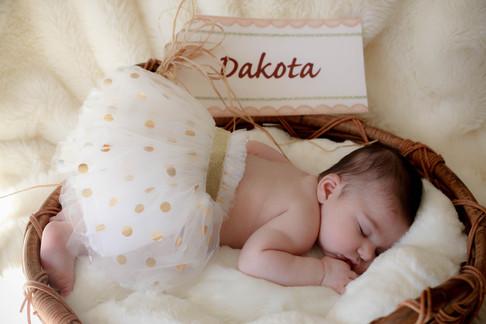 Dakota-85.jpg