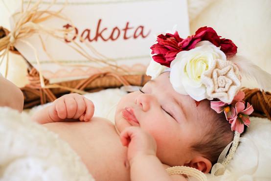 Dakota-77.jpg