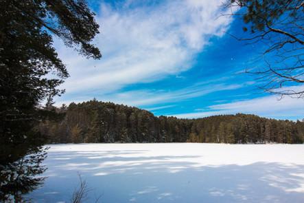 Snowy Fallison