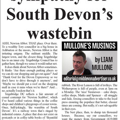 Have Some Sympathy For South Devon's Wastebin