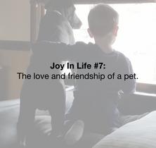 Life Joy #7
