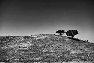 Somewhere between Lisbon and Faro, (Portugal 2016)