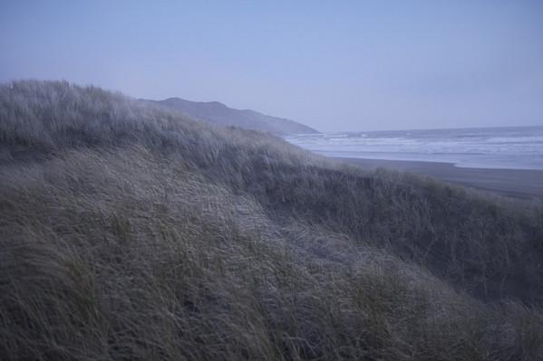 NZ02.jpg