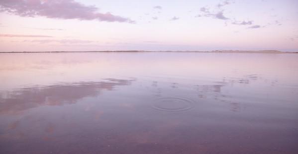NZ09.jpg