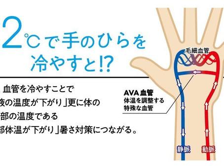 手のひらを冷やして熱中症対策⁉️🤲❄️✨