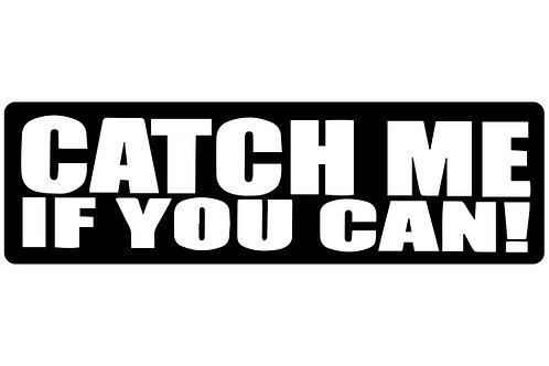 Catch Me If You Can! Sticker