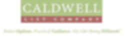 Logo and tagline, as part of new brndidentity, developed for Atlanta-based list brokerage.
