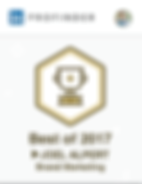 "Joel Alpert of Atlanta LinkedIn Personal Branding is noted as a LinkedIn Profider ""Best Of"" expert in branding."
