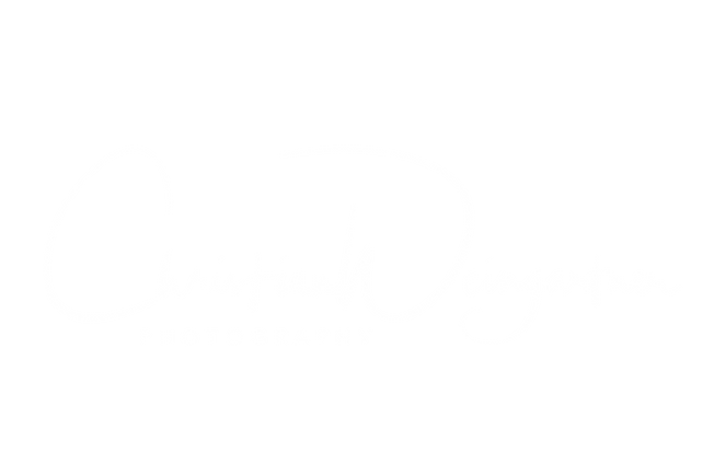 Christian-Weingartner-white-highres.png