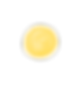Logo Sun Chamber_edited.png