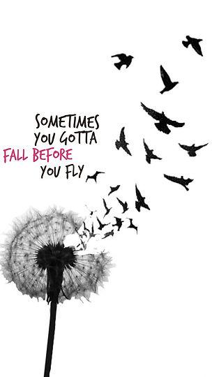Fall before fly.jpg